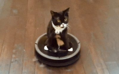 Channeling Your Inner Roomba